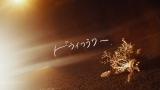 須澤紀信「ドライフラワー 」MVサムネイル画像