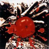 1990年代アルバム1位獲得作品:桑田佳祐『孤独の太陽』