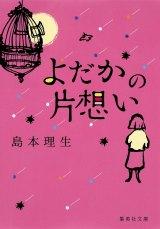 島本理生「よだかの片想い」(集英社文庫)