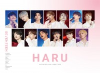 SEVENTEEN 2019 JAPAN TOUR'HARU'(2DVD+PHOTO BOOK)