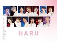 SEVENTEEN 2019 JAPAN TOUR'HARU'(2Blu-ray+PHOTO BOOK)