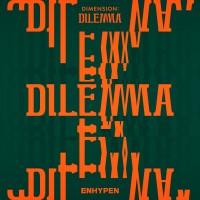 DIMENSION:DILEMMA